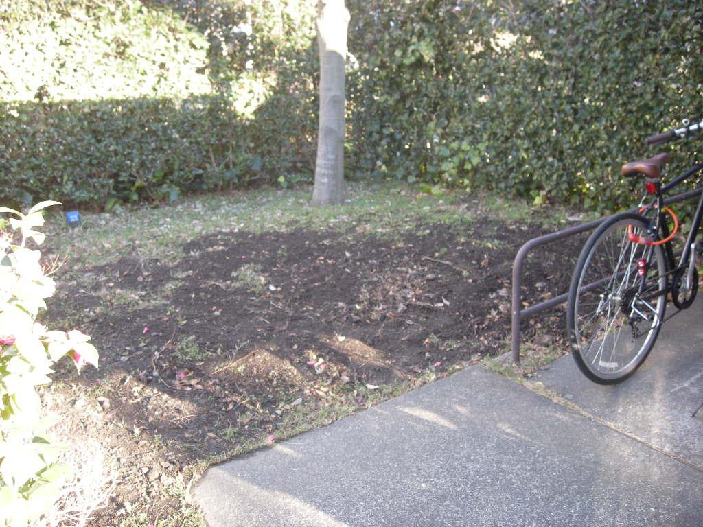 駐輪場土間1